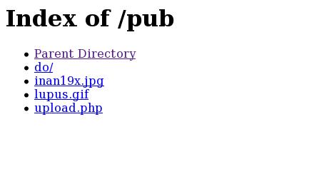 Halaman Web Berisi List File pada Server