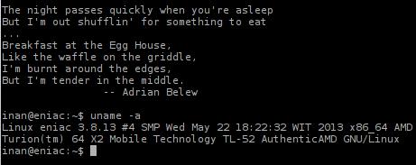 Slackware64 13.37 on Linux Kernel 3.8.13